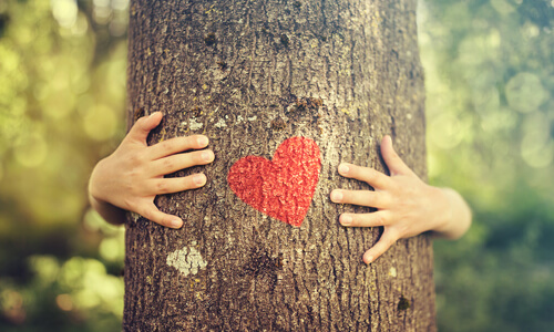Save a Tree: Sign up for eStatements!